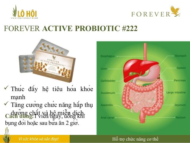 Thực phẩm chức năng Forever Active Probiotic bổ sung thêm các loại vi khuẩ