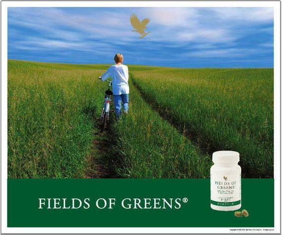 thực phẩm chức năng Forever Fields of green có tới 120mg bột lá mầm lúa mỳ