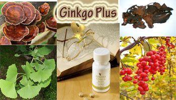 Thực phẩm chức năng Forever Ginkgo Plus