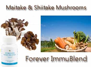 Thực phẩm chức năng Forever Immublend ms:335 tăng cường hệ miễn dịch toàn diện