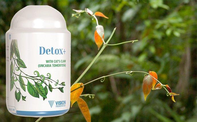 Thực phẩm chức năng Detox+ khắc tinh của những độc tố gây hại cơ thể