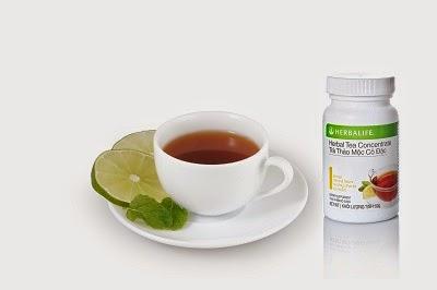 Trà Thảo Mộc Cô Đặc Herbal Tea Concentrate 2