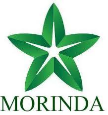 Noni Morinda